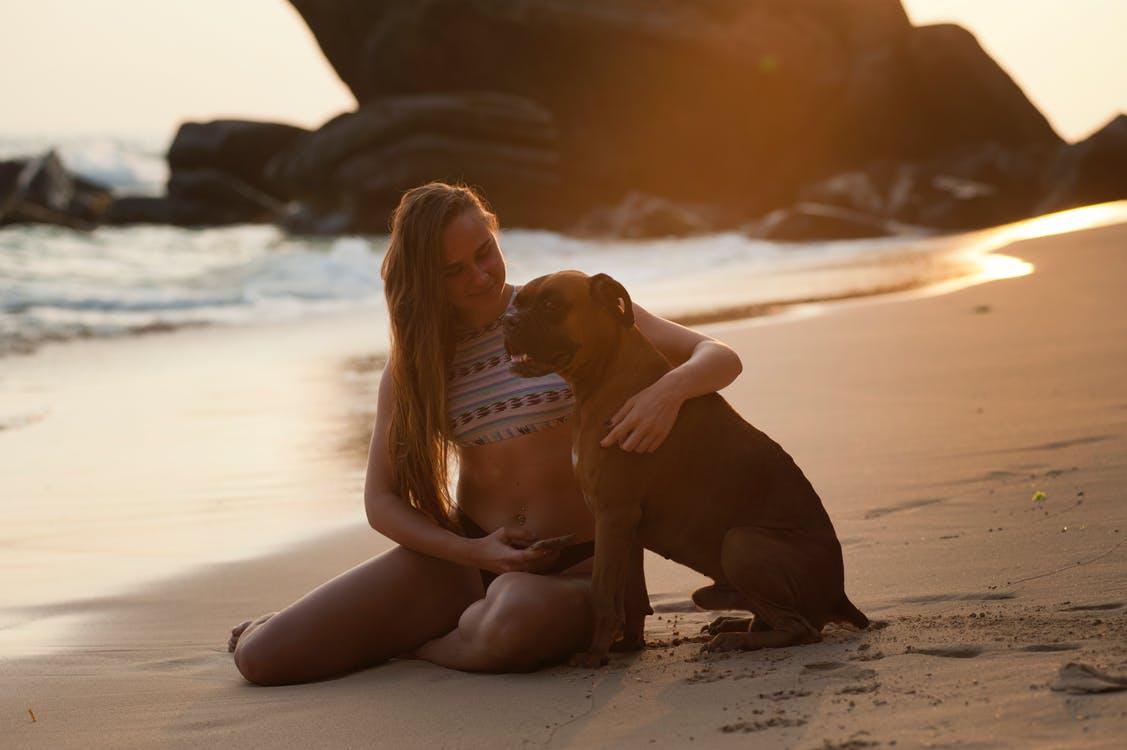 Hund og jente på stranda
